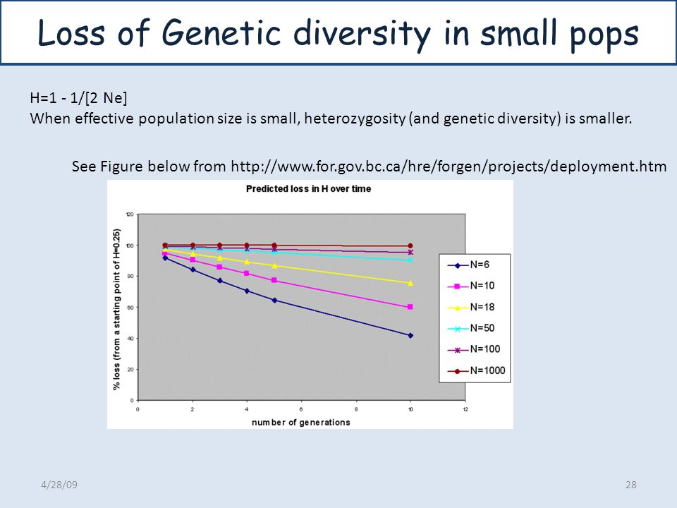 Loss of Genetic diversity in small pops