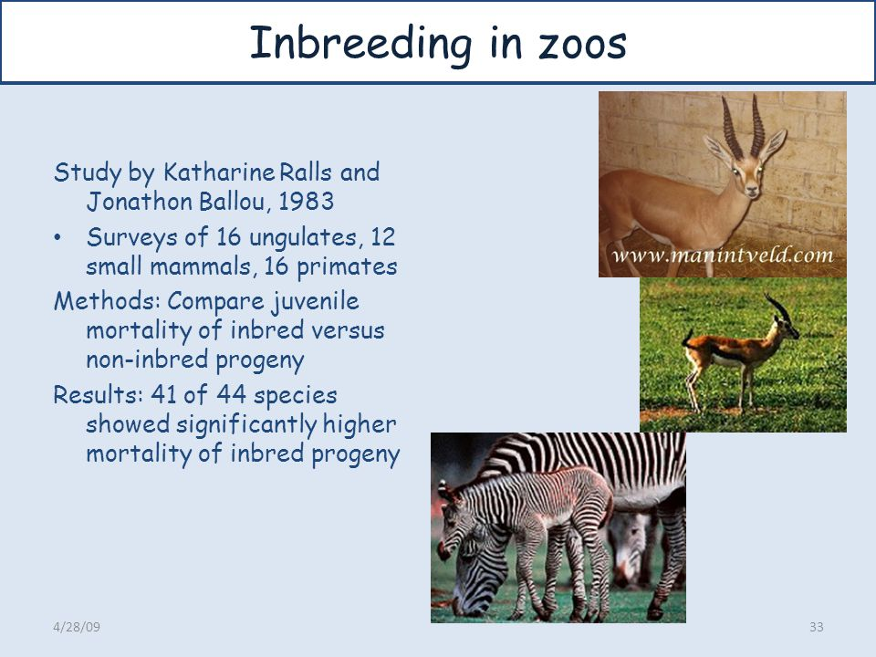 Inbreeding in zoos Study by Katharine Ralls and Jonathon Ballou, 1983