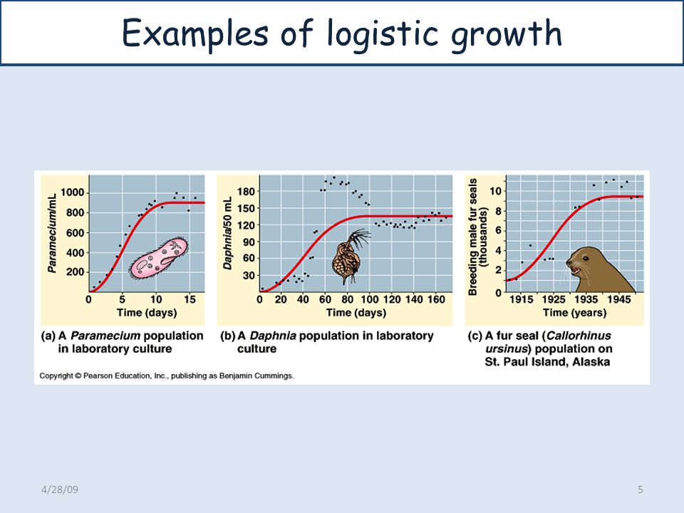 Examples of logistic growth