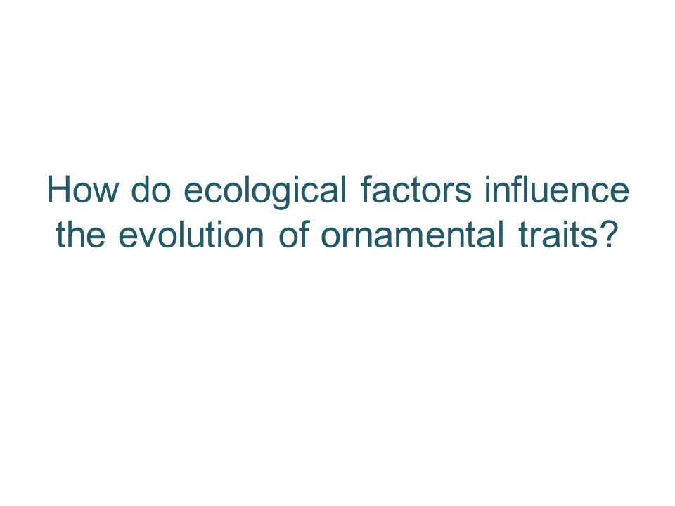 How do ecological factors influence the evolution of ornamental traits