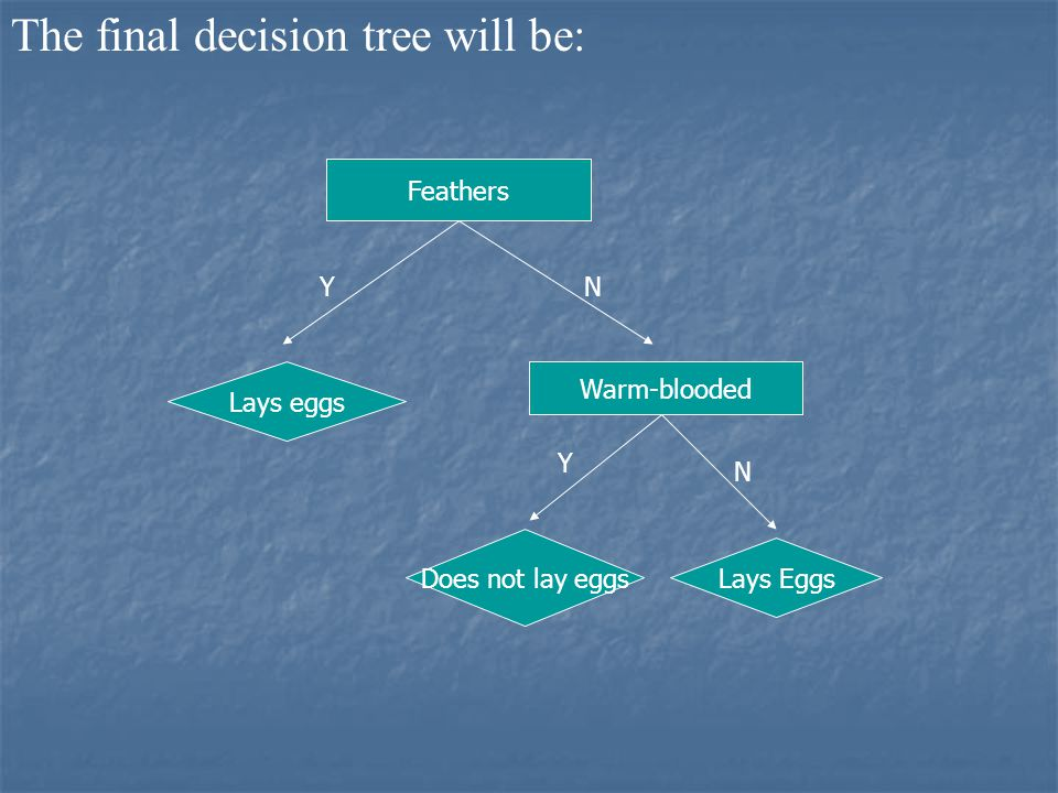 The final decision tree will be: