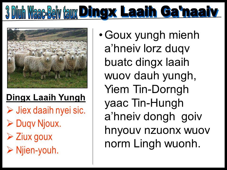 3 Diuh Waac-Beiv taux Dingx Laaih Ga naaiv