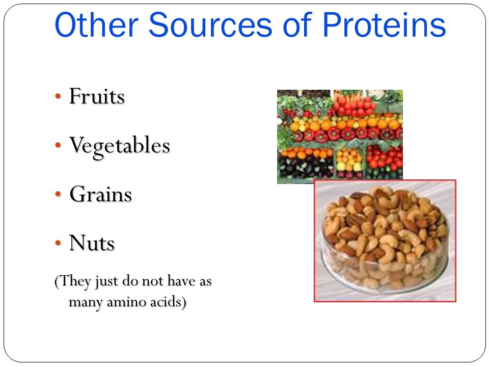 Other Sources of Proteins
