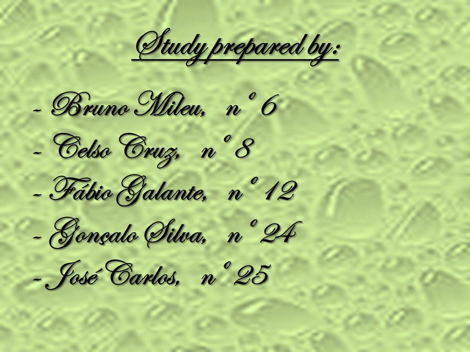 Study prepared by: - Bruno Mileu, nº 6 - Celso Cruz, nº 8 - Fábio Galante, nº 12 - Gonçalo Silva, nº 24 - José Carlos, nº 25