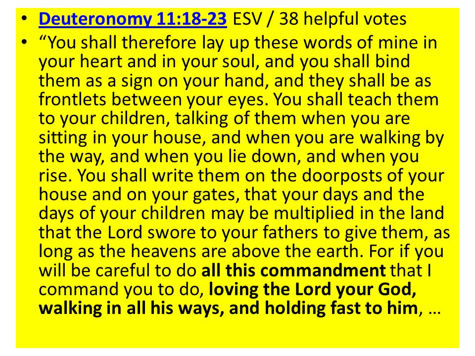 Deuteronomy 11:18-23 ESV / 38 helpful votes