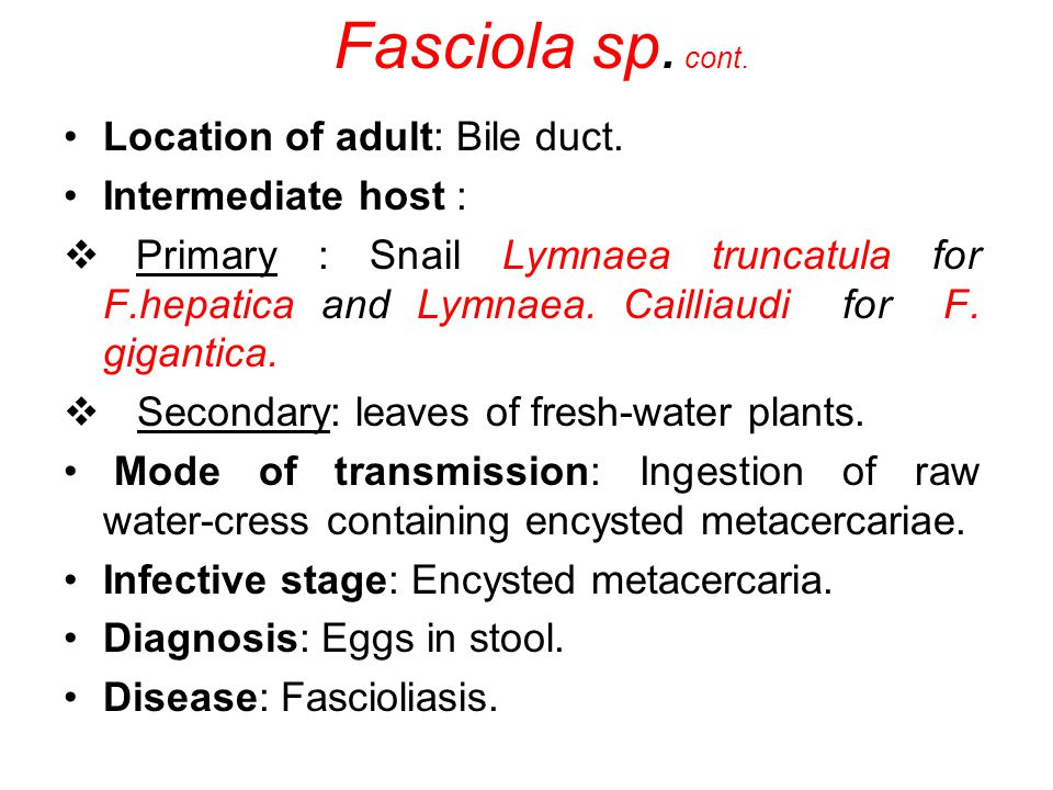Fasciola sp. cont. Location of adult: Bile duct. Intermediate host :