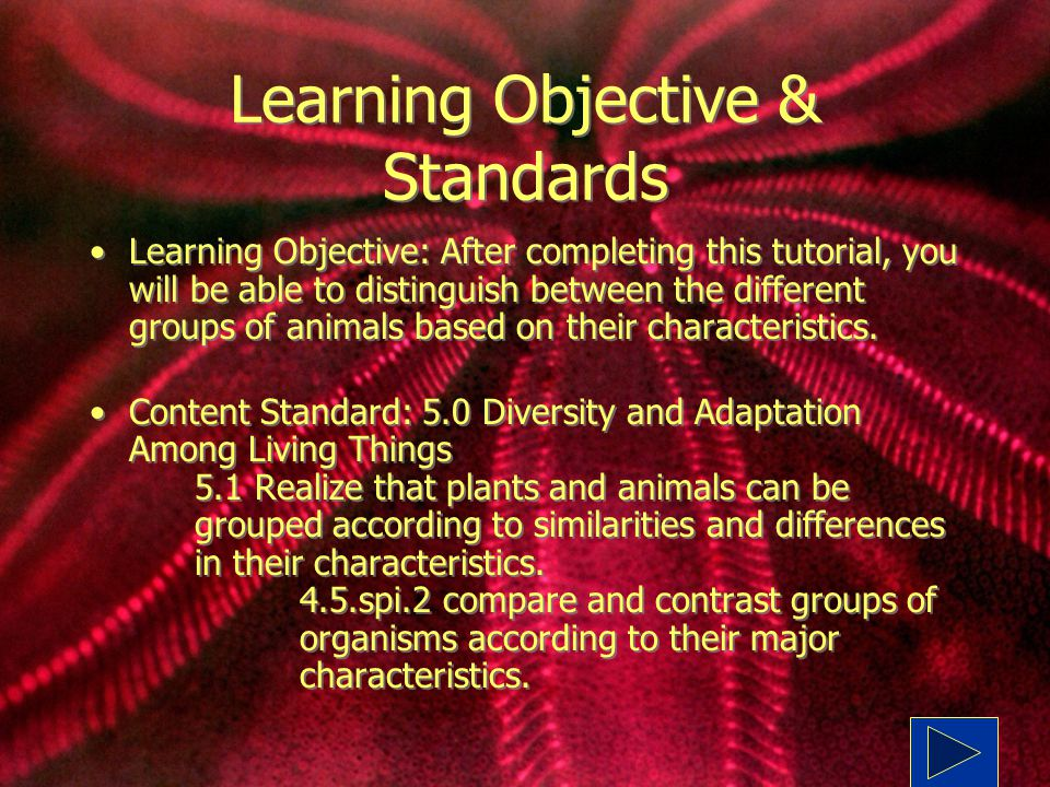 Learning Objective & Standards