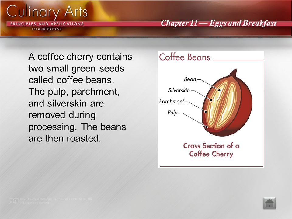 A coffee cherry contains two small green seeds called coffee beans