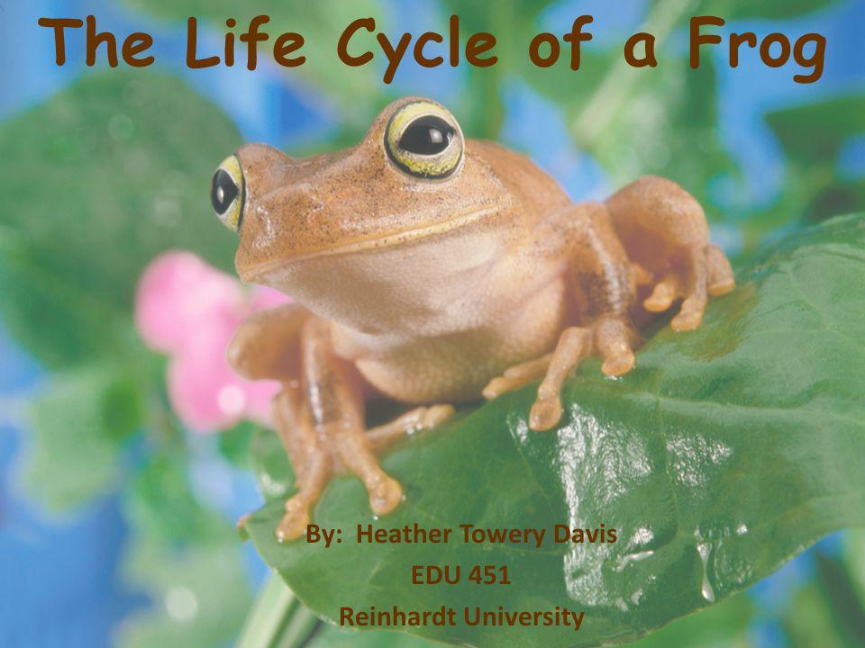 By: Heather Towery Davis EDU 451 Reinhardt University