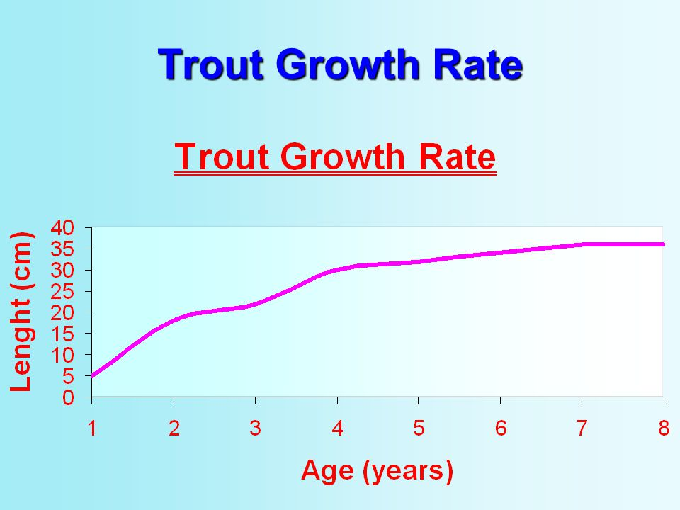 Trout Growth Rate