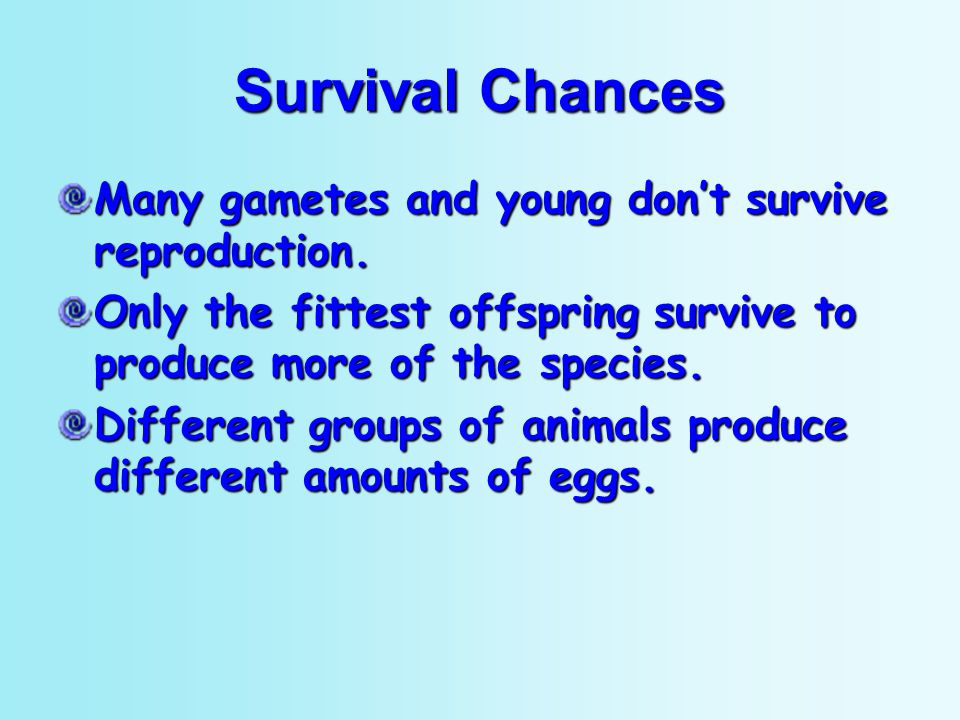 Survival Chances Many gametes and young don't survive reproduction.