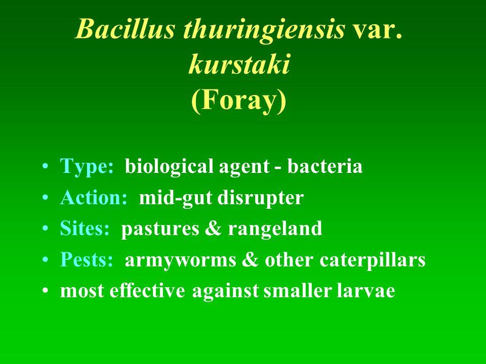 Bacillus thuringiensis var. kurstaki (Foray)