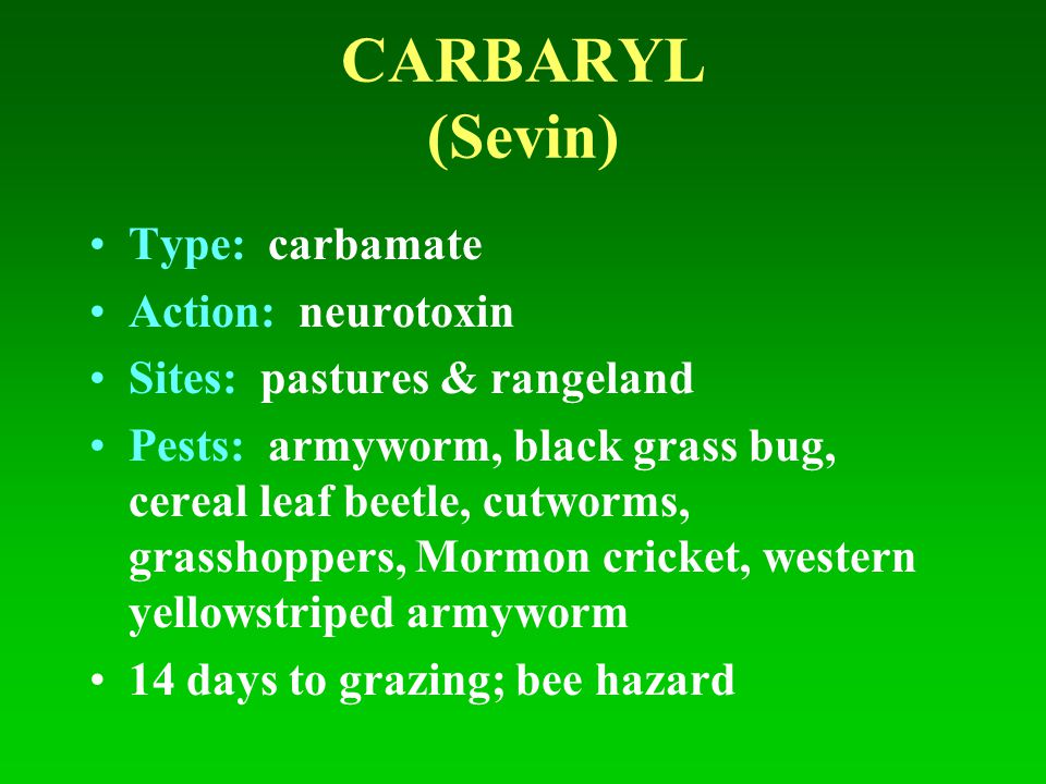 CARBARYL (Sevin) Type: carbamate Action: neurotoxin