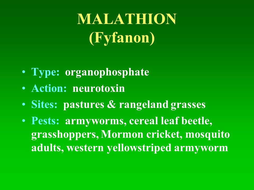 MALATHION (Fyfanon) Type: organophosphate Action: neurotoxin