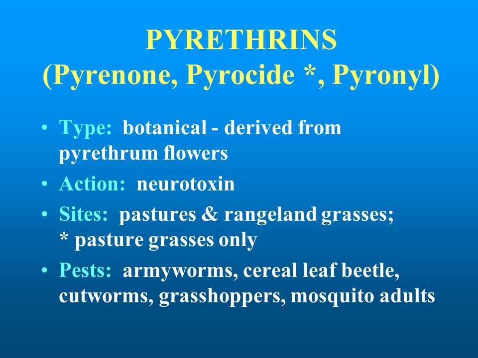 PYRETHRINS (Pyrenone, Pyrocide *, Pyronyl)