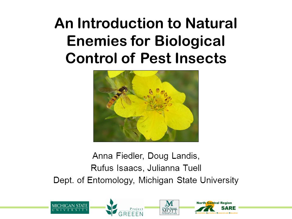 An Introduction to Natural Enemies for Biological Control of Pest Insects