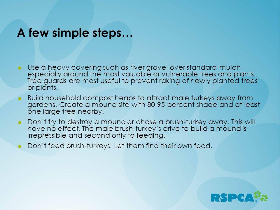 A few simple steps…