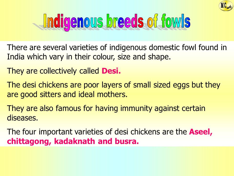 Indigenous breeds of fowls