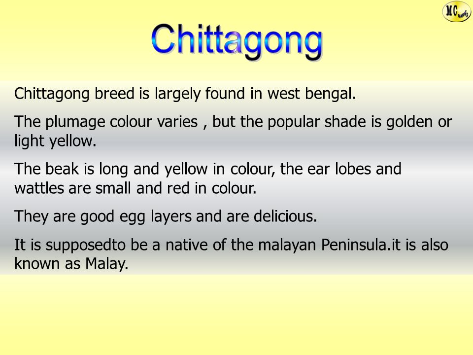 Chittagong Chittagong breed is largely found in west bengal.