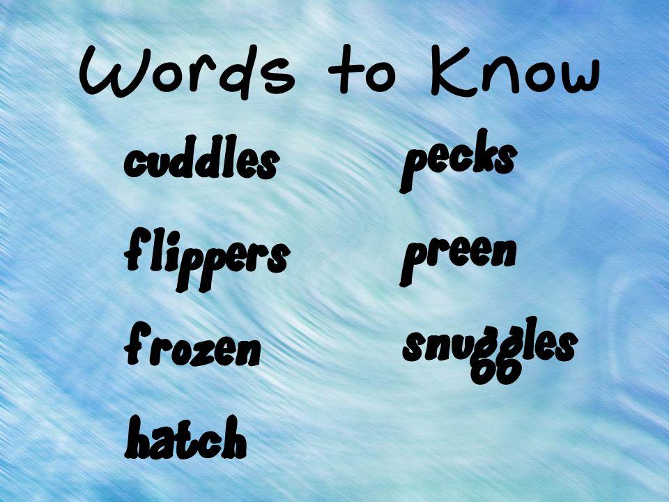 cuddles flippers frozen hatch