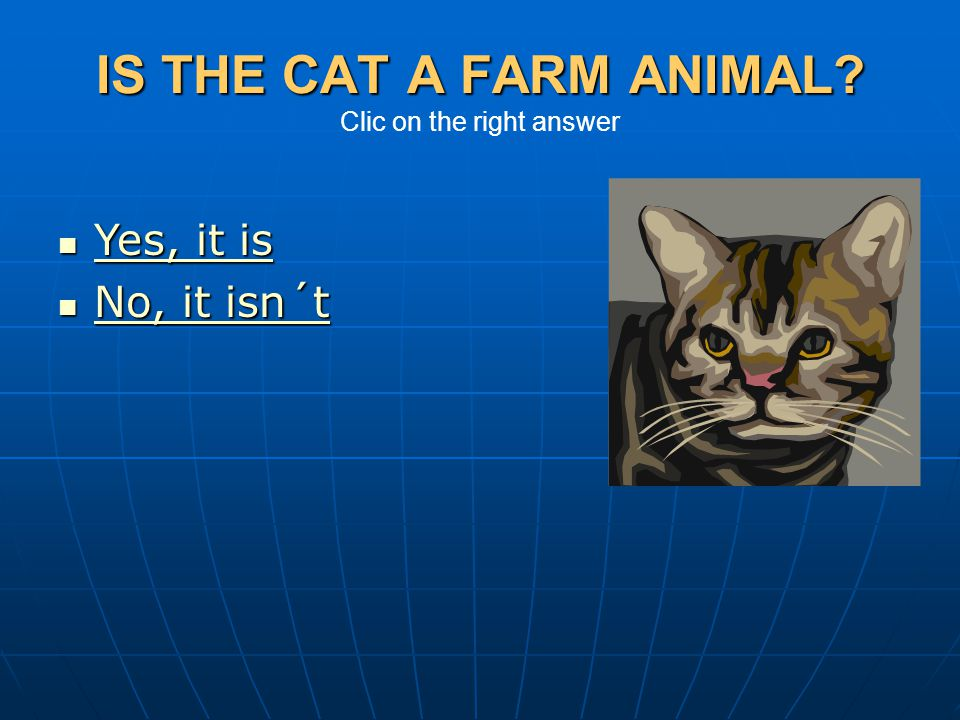IS THE CAT A FARM ANIMAL Clic on the right answer