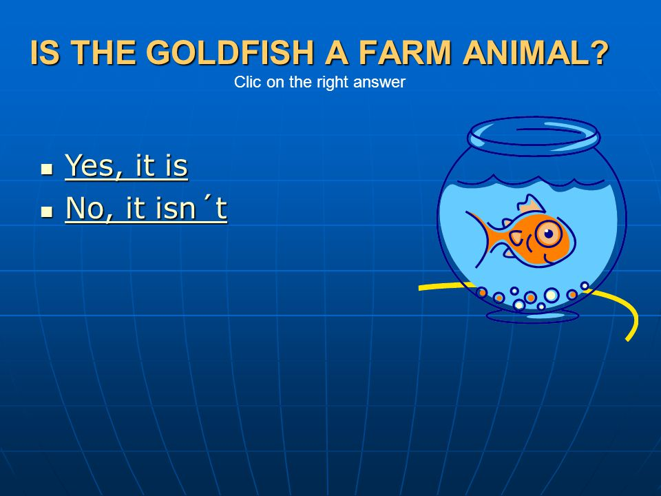 IS THE GOLDFISH A FARM ANIMAL Clic on the right answer