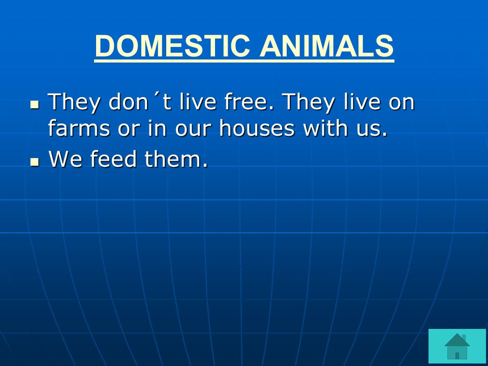 DOMESTIC ANIMALS They don´t live free. They live on farms or in our houses with us. We feed them.