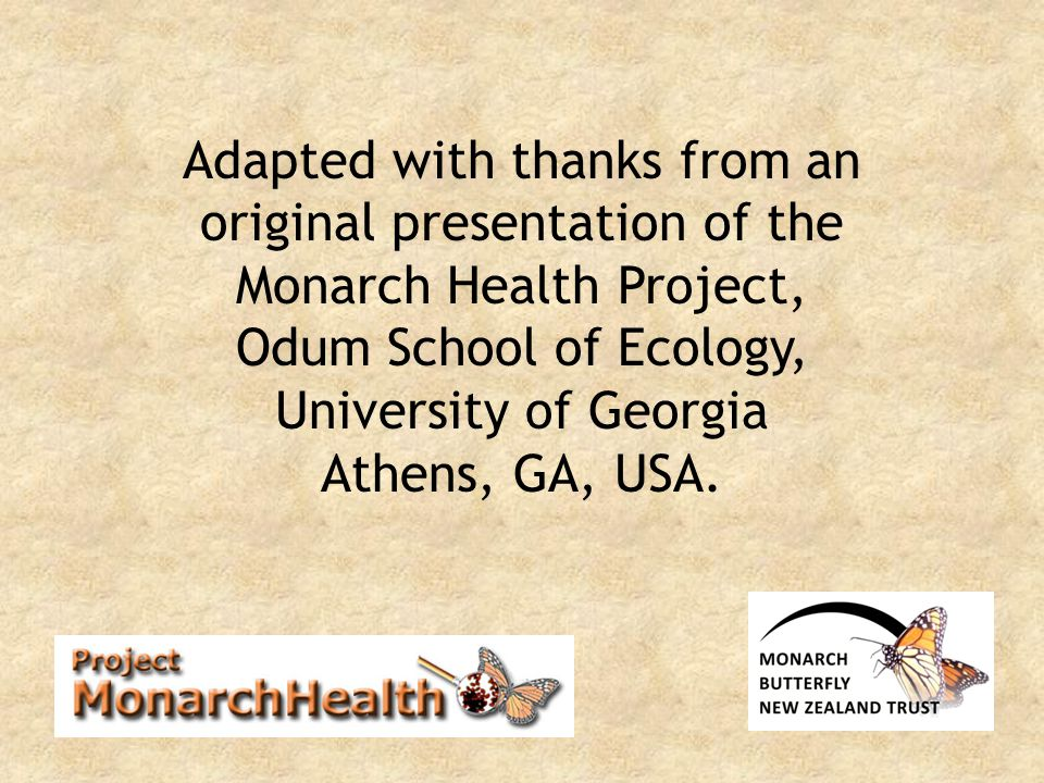 Adapted with thanks from an original presentation of the Monarch Health Project, Odum School of Ecology, University of Georgia Athens, GA, USA.