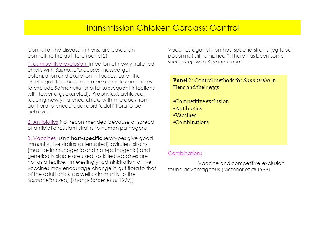 Transmission Chicken Carcass: Control