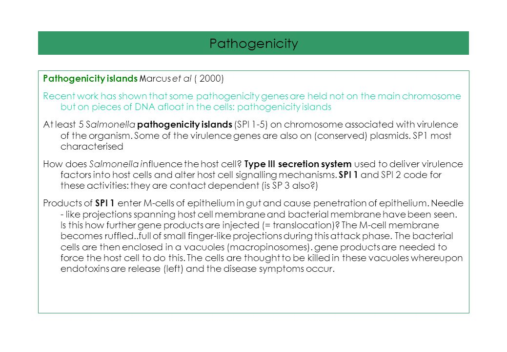 Pathogenicity Pathogenicity islands Marcus et al ( 2000)