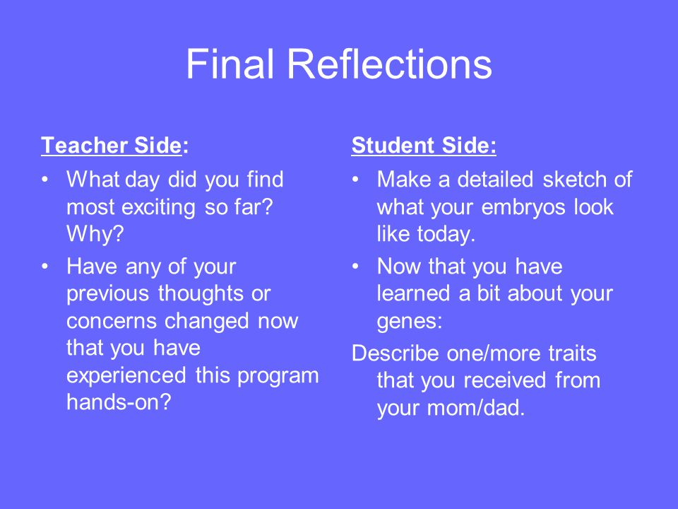 Final Reflections Teacher Side: Student Side: