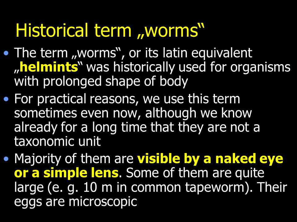 "Historical term ""worms"