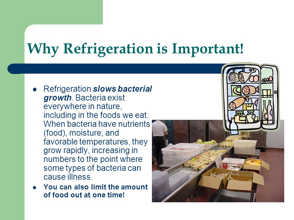 Why Refrigeration is Important!