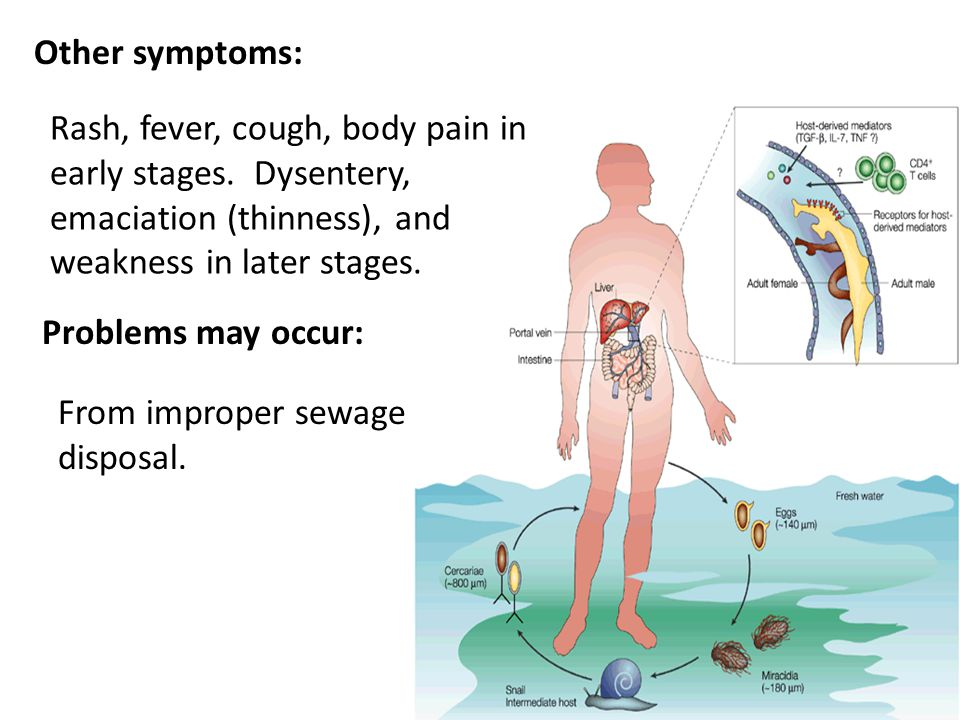 Other symptoms: Rash, fever, cough, body pain in early stages. Dysentery, emaciation (thinness), and weakness in later stages.