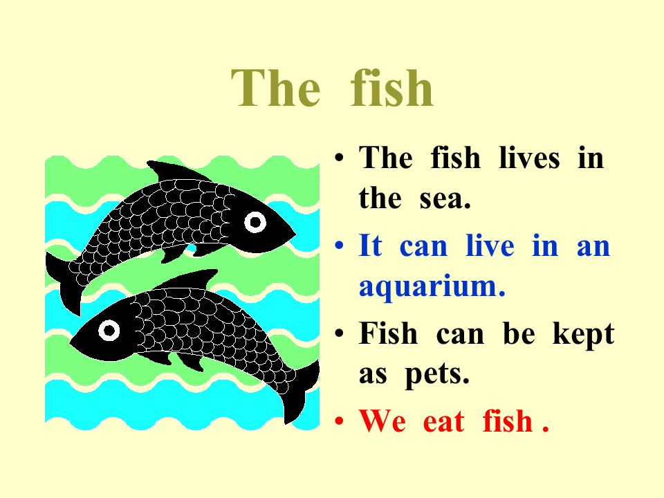 The fish The fish lives in the sea. It can live in an aquarium.