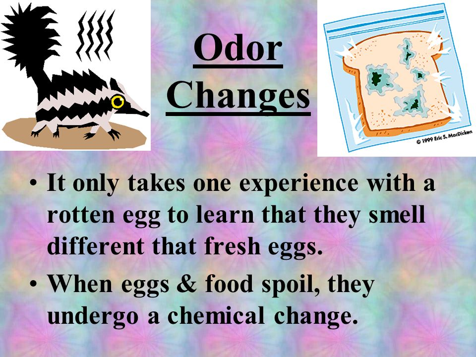 Odor Changes It only takes one experience with a rotten egg to learn that they smell different that fresh eggs.