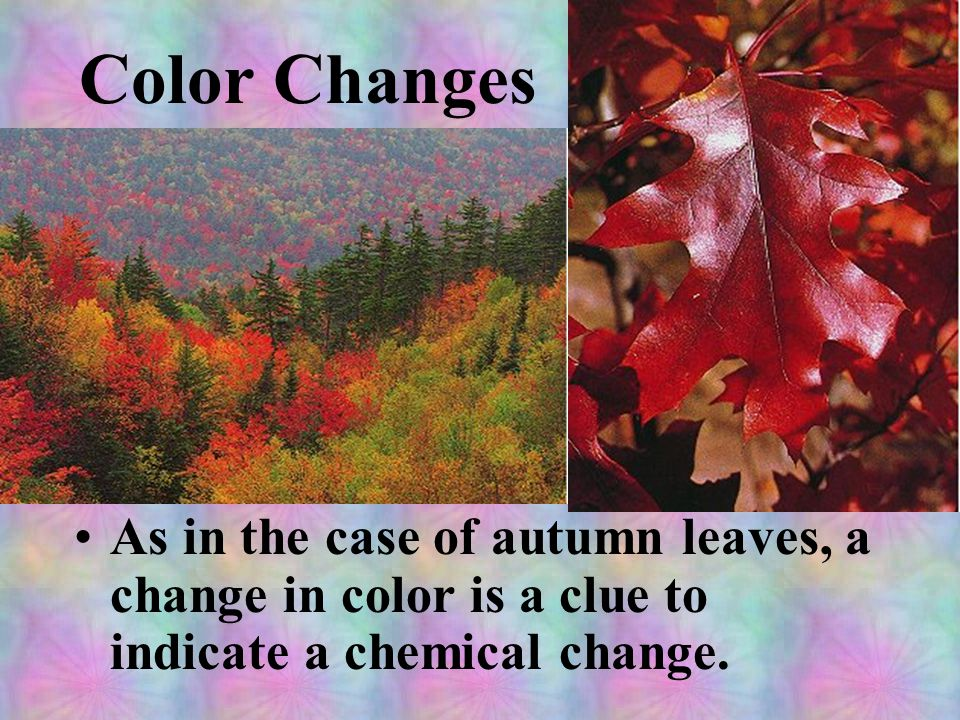 Color Changes As in the case of autumn leaves, a change in color is a clue to indicate a chemical change.