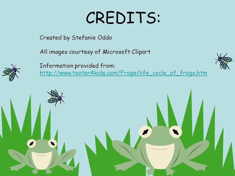 CREDITS: Created by Stefanie Oddo