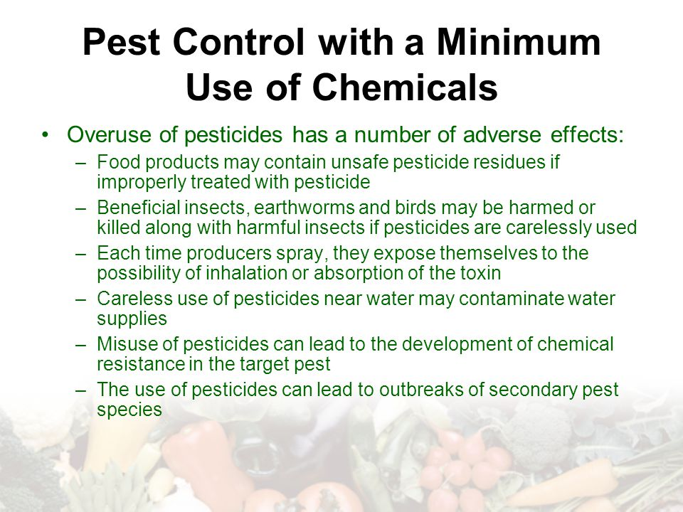 Pest Control with a Minimum Use of Chemicals