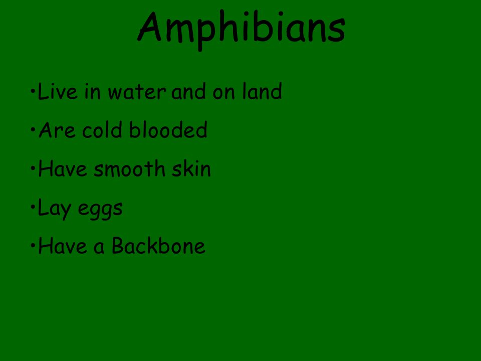 Amphibians Live in water and on land Are cold blooded Have smooth skin