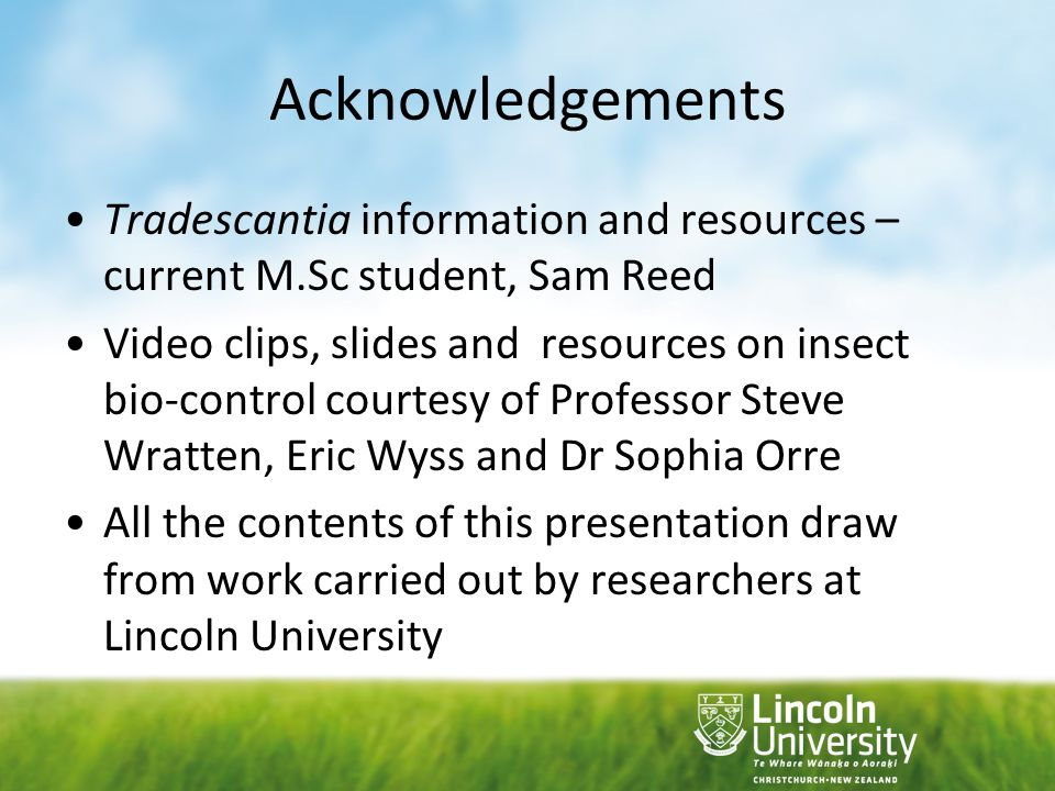 Acknowledgements Tradescantia information and resources – current M.Sc student, Sam Reed.