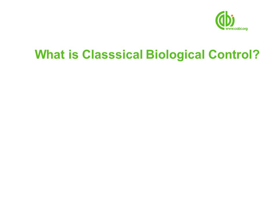 What is Classsical Biological Control
