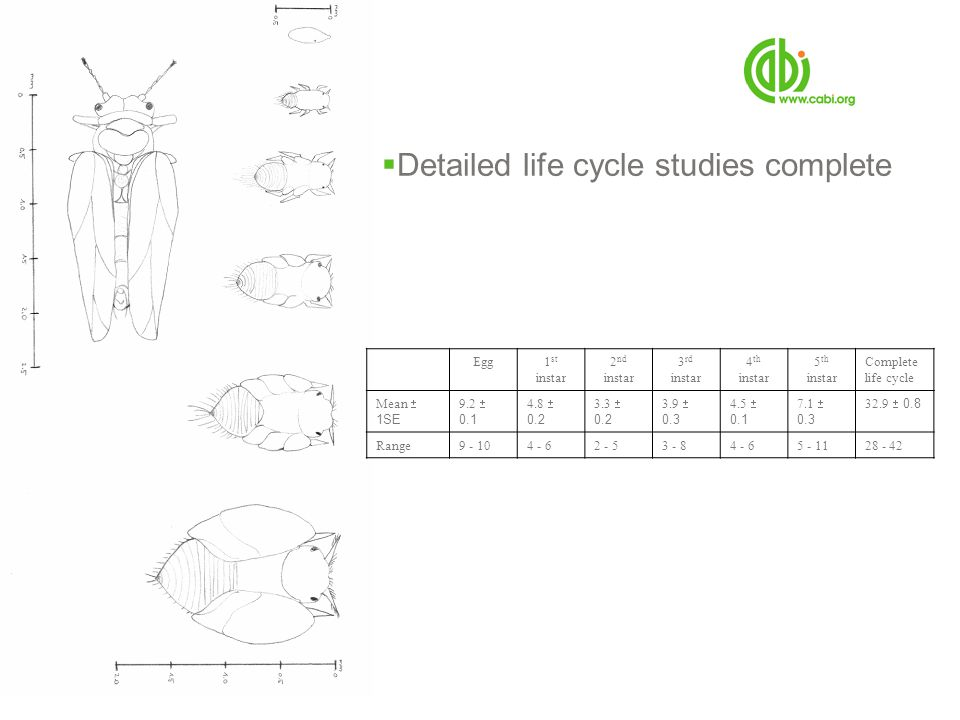 Detailed life cycle studies complete