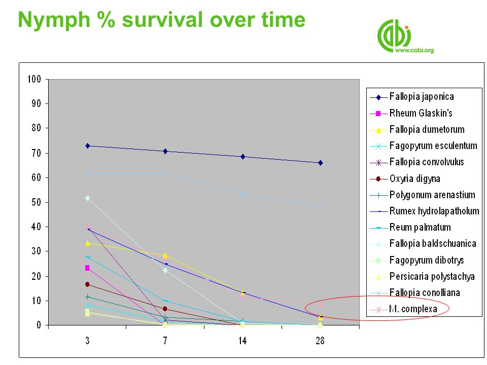 Nymph % survival over time
