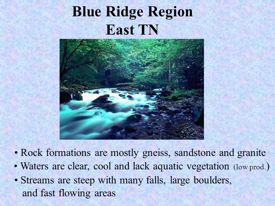Blue Ridge Region East TN