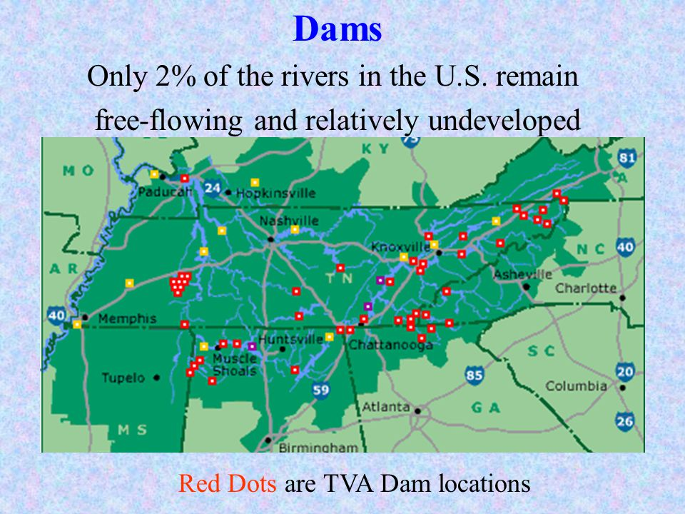 Dams Only 2% of the rivers in the U.S. remain