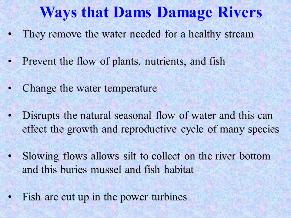 Ways that Dams Damage Rivers