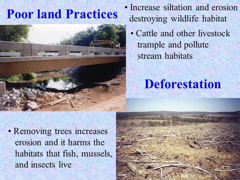 Poor land Practices Deforestation Increase siltation and erosion