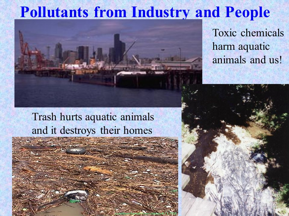 Pollutants from Industry and People