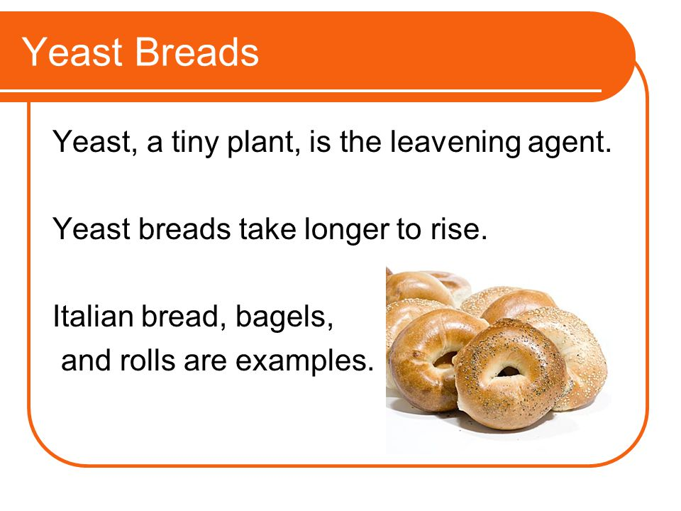 Yeast Breads Yeast, a tiny plant, is the leavening agent.